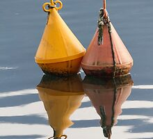 buoy on  lake by spetenfia