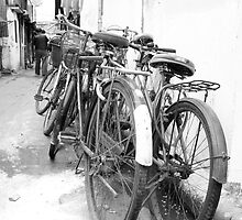 Shanghai Bicycles by Julien Bertrand