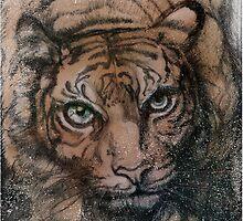 Tiger (full T) by David McBurney