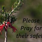 Please pray for their safety by myraj