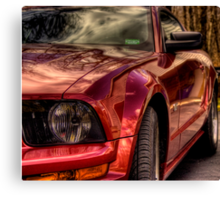 Mustang Mary Canvas Print