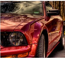 Mustang Mary Photographic Print
