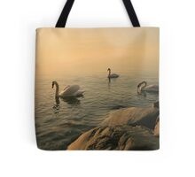 A Trio Of Swans At Sunrise Tote Bag