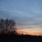 skies1 by wespenspinne