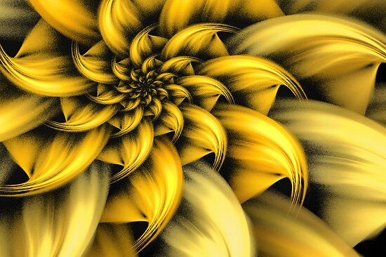 Fiore giallo by John Edwards