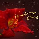 Merry Christmas! by Irina777