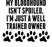 Well Trained Bloodhound Owner by kwg2200