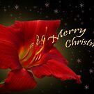 Merry Christmas by Irina777