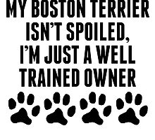 Well Trained Boston Terrier Owner by kwg2200