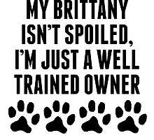Well Trained Brittany Owner by kwg2200