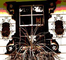 Window Box by PPPhotoArt