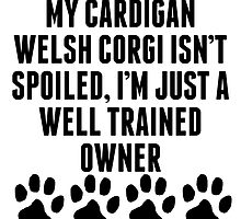 Well Trained Cardigan Welsh Corgi Owner by kwg2200