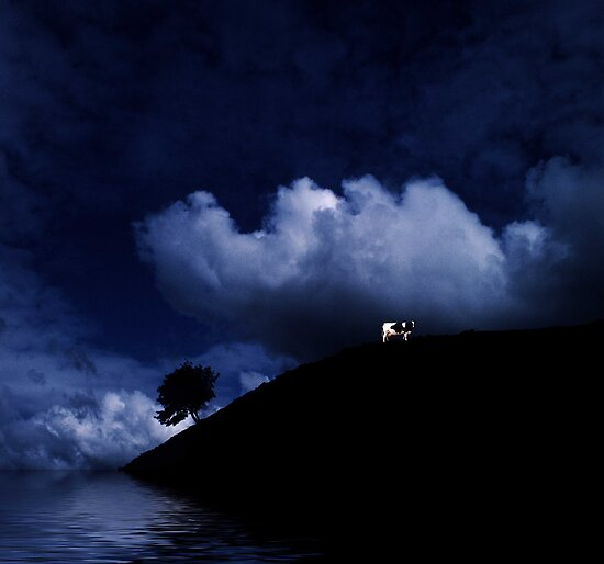 Cow by Moonlight ! by Dave Hiskey