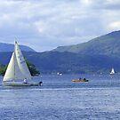 Lake Windermere II by Tom Gomez