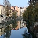 Ljubljanica river by Andy Cook