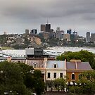 View of North Sydney From Observatory Park by MiImages