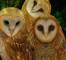 Owls, Whimsical, Imaginary, Colorful Hand Drawn Barn Owls by margaretdill