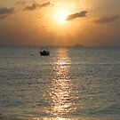 Sun setting over departing cruise ship by caymanlogic