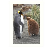 King Penguin and chick ~ Meal Time Art Print