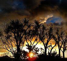 Sunset at Kapiti Coast by Peter Kurdulija
