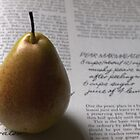 Corella Pear  by Tom McDonnell