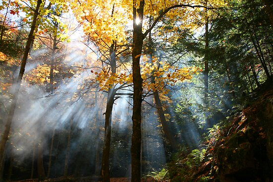 augural autumn aura by Christopher Berry