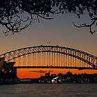 Sydney by Dev Wijewardane