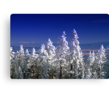 The Enchanting Snowfall Canvas Print