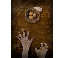 A mouse, a nest and greedy hands Photographic Print