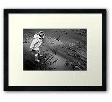 lily beach Framed Print