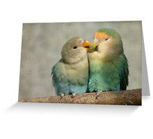 Oh!! Come On Give Me A Kiss..-Lovebirds - NZ Queenspark Greeting Card