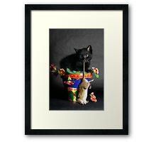 Rat Cat Framed Print