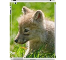 Just smelling the flowers _ Arctic Wolf Pup iPad Case/Skin