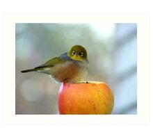 If This Is The Big Apple, I Must Be King Kong! - Silvereye - NZ Art Print