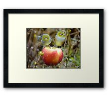 Who'll Stop the Rain From Falling Down On Us? - Silvereyes-NZ Framed Print