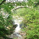 Bridge in the Green by finnomanon