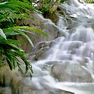 Toward the Caribbean: Dunns River Falls, Jamaica by Paul  Huchton