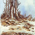 My neighbour's trees by Maree  Clarkson