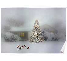 Snow Birds and Christmas Tree Poster