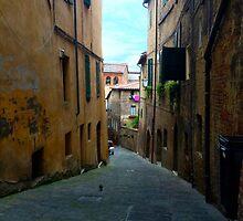 Siena by trilltrio