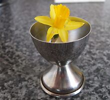 Egg Cup Daffy by pat oubridge