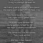 Freedom by Darlene Ruhs