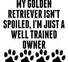 Well Trained Golden Retriever Owner by kwg2200