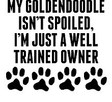 Well Trained Goldendoodle Owner by kwg2200
