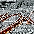 Rusty Tracks by Steven  Agius