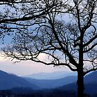 smoky mountain blues by s m c
