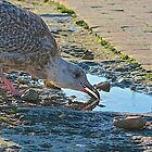 Thirsty Work by John Thurgood