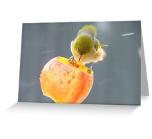 Remind Me Again...Why Is Wind Tunnel Testing Necessary? - Silver-Eye NZ Greeting Card