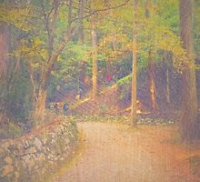 Hikers Walking Along Tranquil Kozan-ji Forest Kyoto Japan by Beverly Claire Kaiya