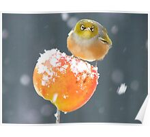 This Toffee Apple Is ALL MINE!!! - Silver-eye - NZ Poster